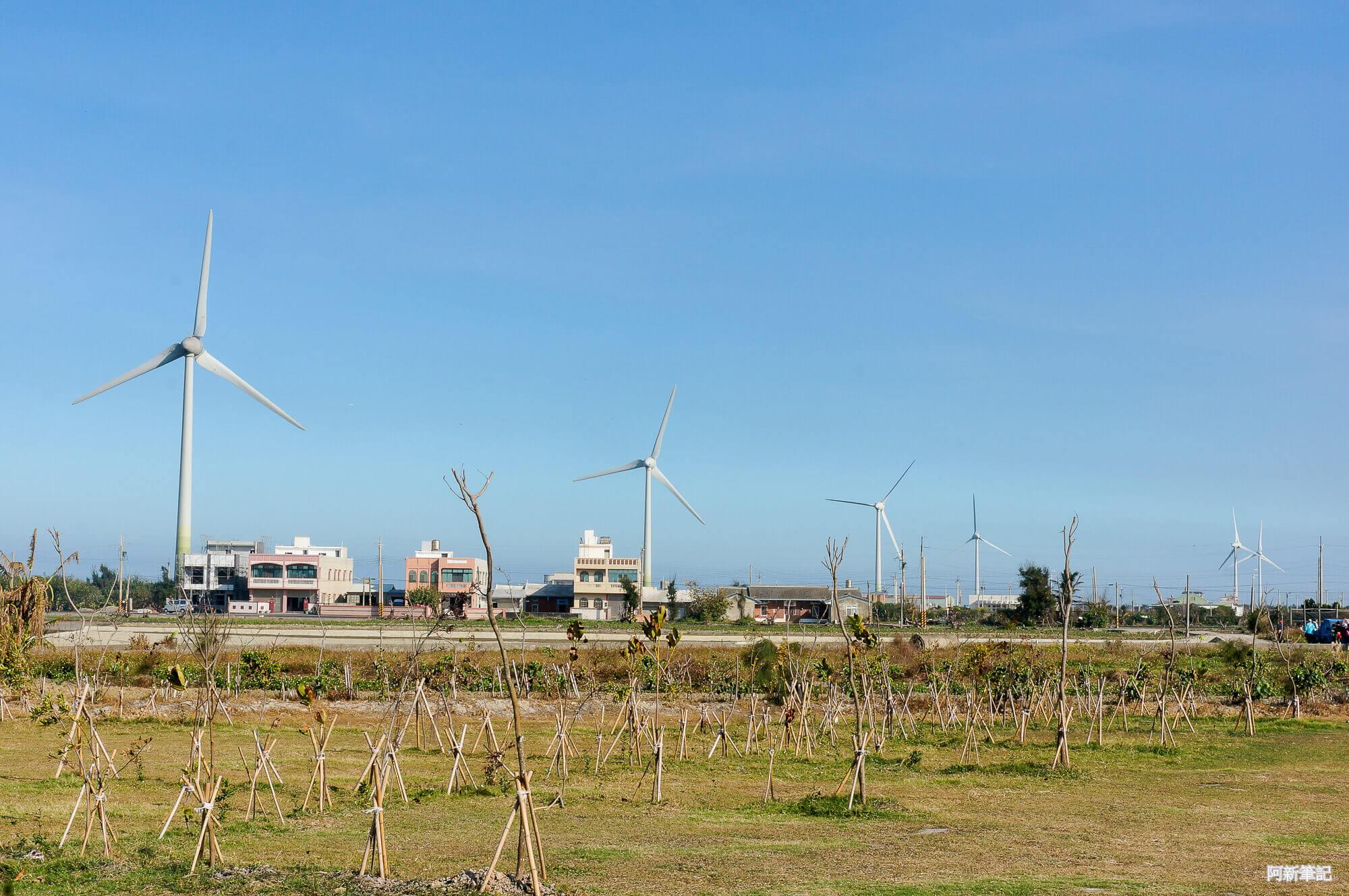 葵海農場-05