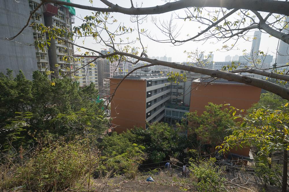 香港嘉頓山晨運徑,嘉頓山晨運徑,深水埗嘉頓山晨運徑,香港旅遊-07