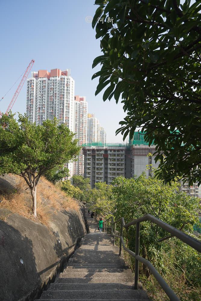 香港嘉頓山晨運徑,嘉頓山晨運徑,深水埗嘉頓山晨運徑,香港旅遊-08
