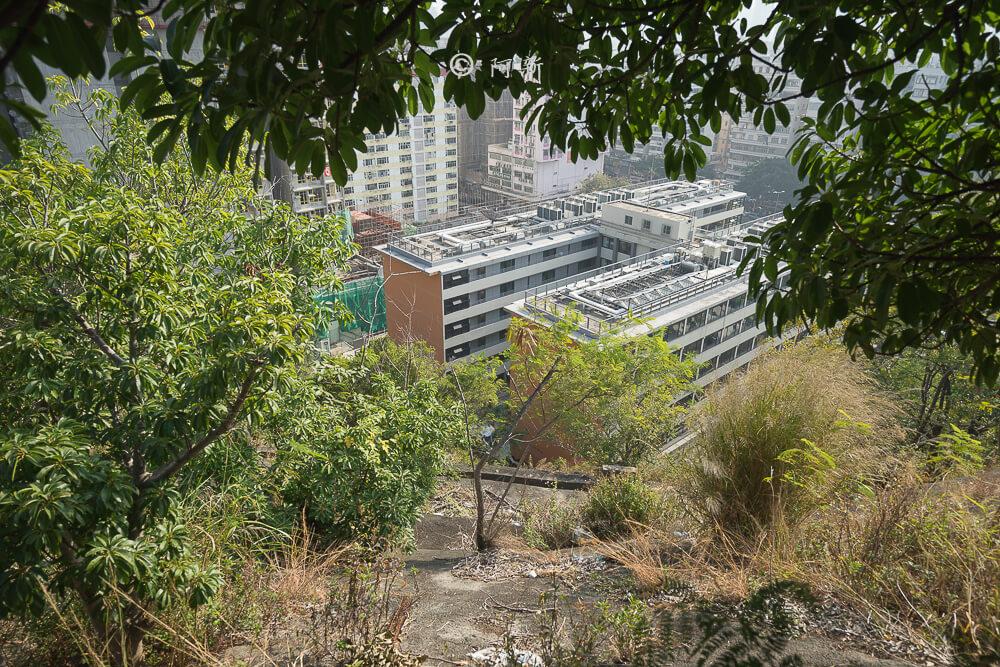 香港嘉頓山晨運徑,嘉頓山晨運徑,深水埗嘉頓山晨運徑,香港旅遊-09