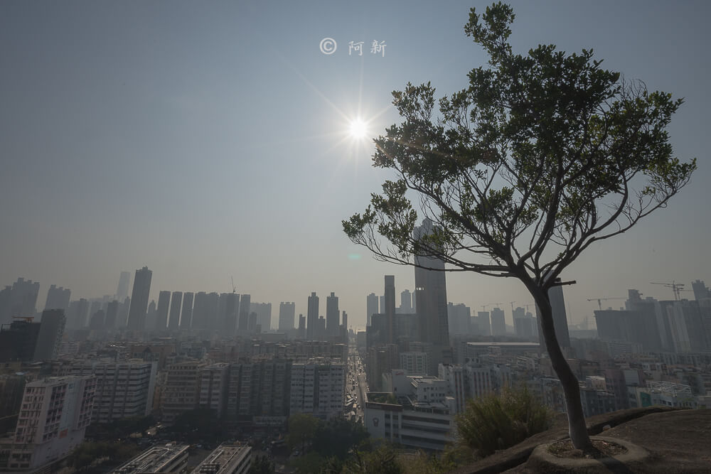 香港嘉頓山晨運徑,嘉頓山晨運徑,深水埗嘉頓山晨運徑,香港旅遊-12