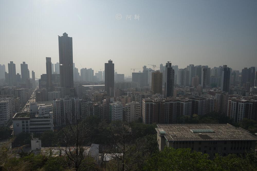 香港嘉頓山晨運徑,嘉頓山晨運徑,深水埗嘉頓山晨運徑,香港旅遊-15