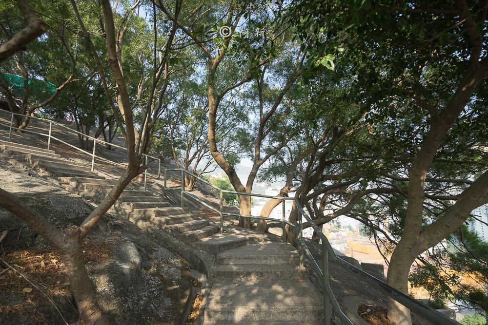 香港嘉頓山晨運徑,嘉頓山晨運徑,深水埗嘉頓山晨運徑,香港旅遊-18