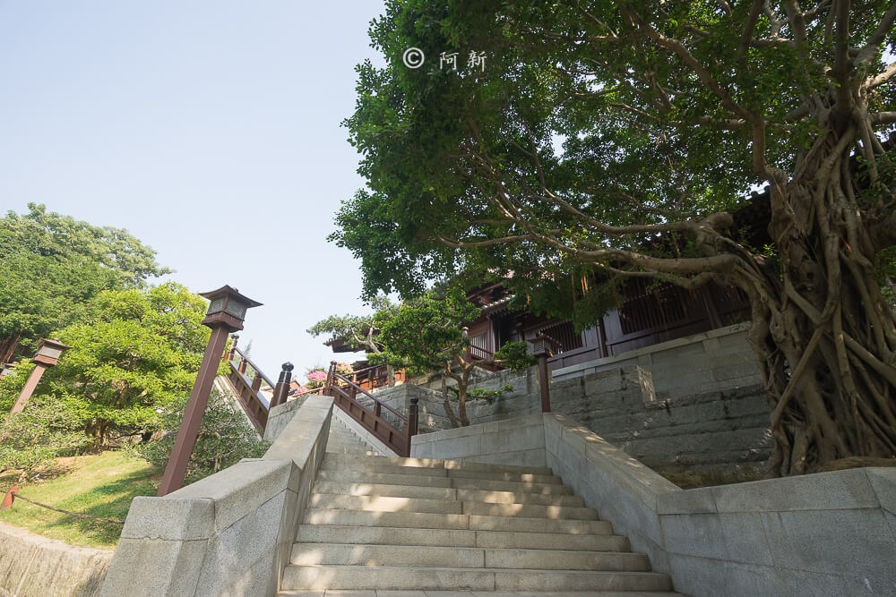 香港西蓮園-04