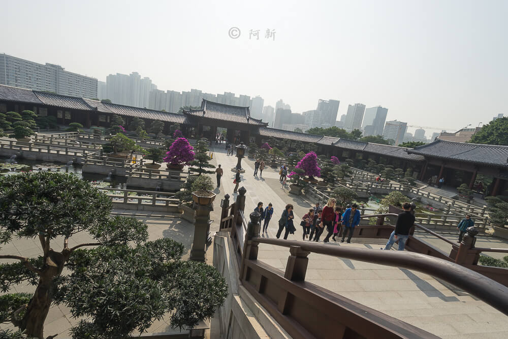 香港西蓮園-13