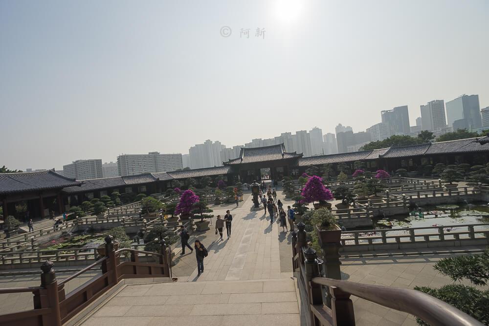香港西蓮園-16
