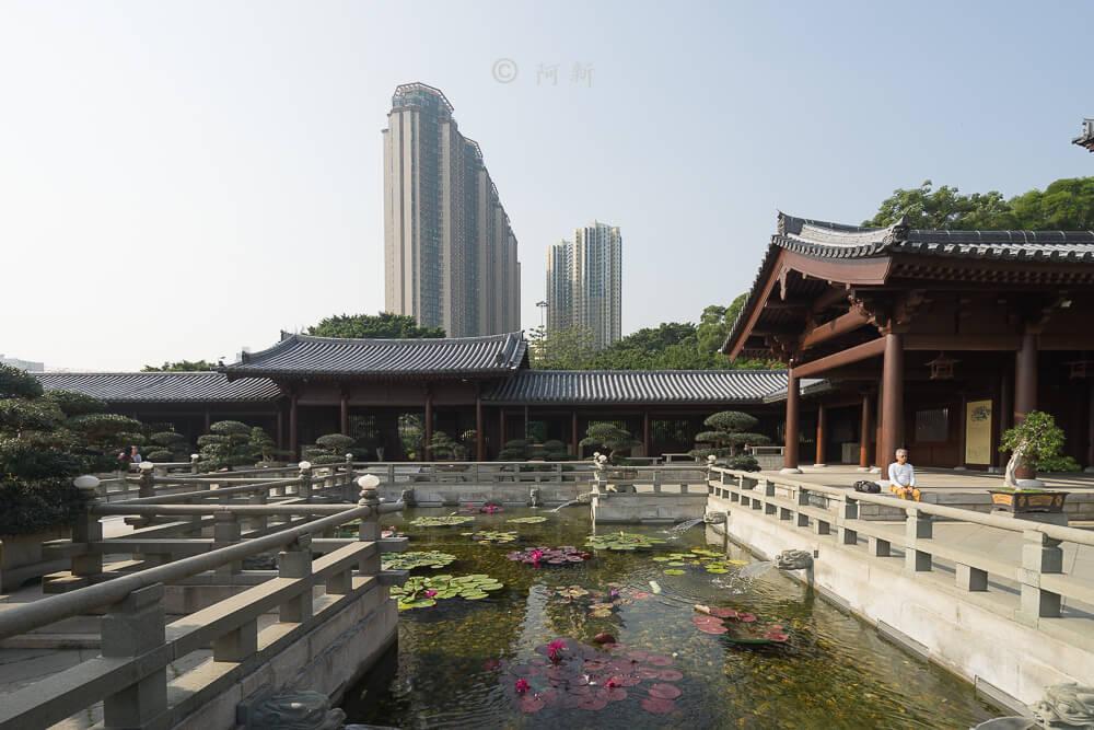 香港西蓮園-17