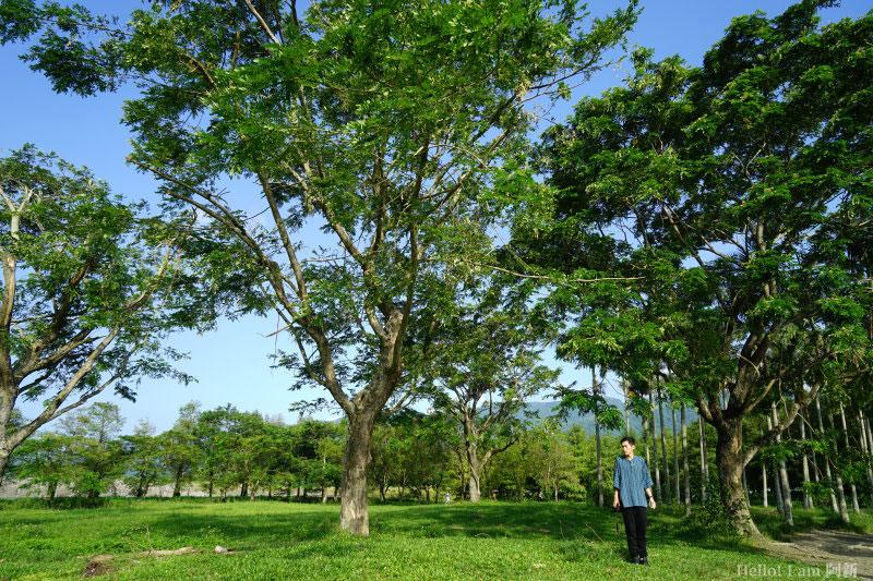 雲山水自然生態農場-19
