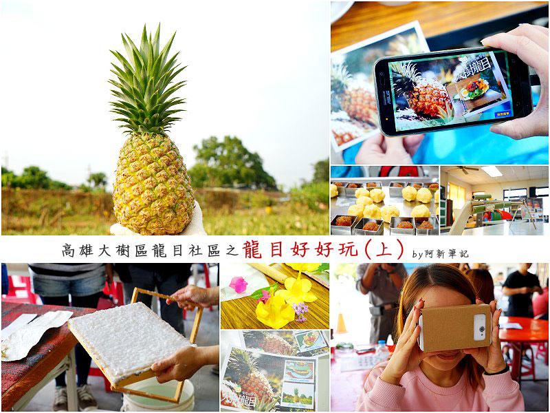 龍目好好玩(上)|高雄大樹區龍目社區之手做鳳梨酥、拔鳳梨、製紙術,還有半夜app尋寶樂。