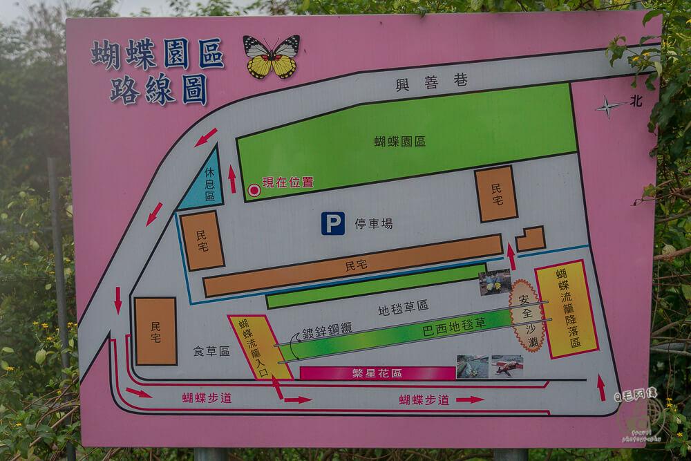 東光蝴蝶廊道,東光蝴蝶,蝴蝶廊道,東光社區,南投景點,埔里景點