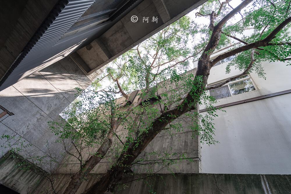 台中菩薩寺,大里菩薩寺,菩薩寺地址-17