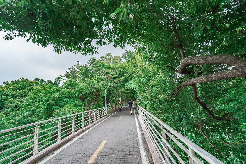 潭雅神s彎道,潭雅神綠園道,潭雅神波浪車道-21