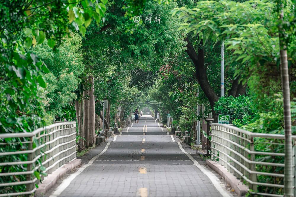 潭雅神s彎道,潭雅神綠園道,潭雅神波浪車道-23