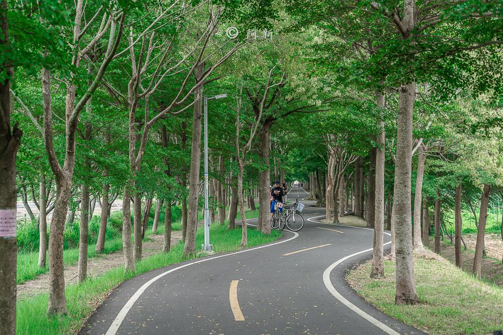 潭雅神s彎道,潭雅神綠園道,潭雅神波浪車道-24