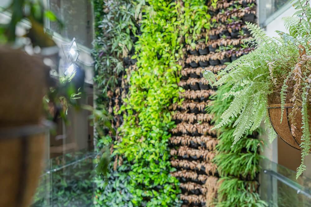 葉綠宿,葉綠宿旅館評價,葉綠宿背包客,台中住宿,逢甲住宿,逢甲葉綠宿