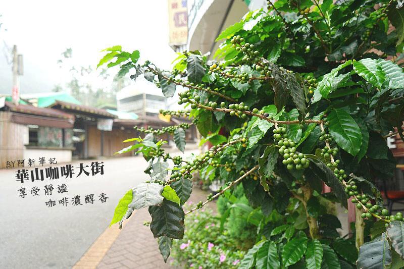 台灣好行斗六古坑線-08