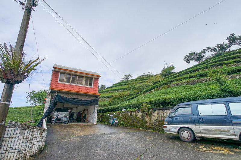 林園製茶-31