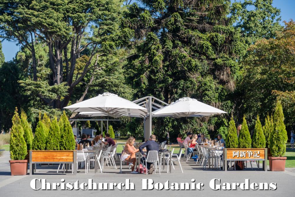 基督城植物園 Christchurch Botanic Gardens |基督城必逛景點,花海、百年大樹~