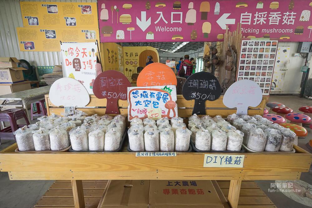 台中百菇莊-10