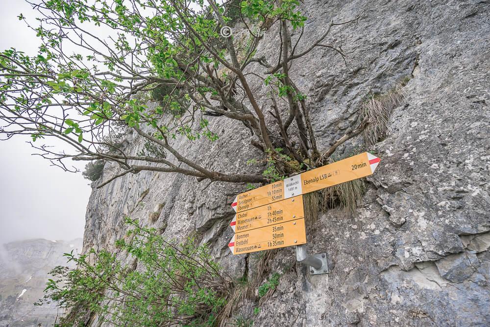 Berggasthaus Aescher,瑞士懸崖餐廳Berggasthaus Aescher Wildkirchli,瑞士懸崖餐廳,Berggasthaus Aescher Wildkirchli,瑞士山崖餐廳-28
