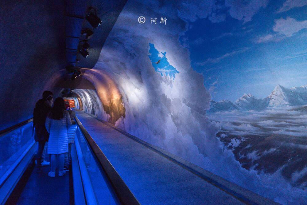 歐洲屋脊,少女峰,Jungfrau,歐洲之巔-33