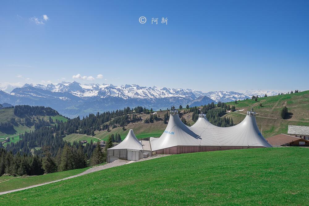瑞吉峰,Rigi,瑞吉山,瑞吉山自由行,瑞士瑞吉峰,瑞士瑞吉山,瑞士自由行,瑞士旅遊,瑞士自助,06