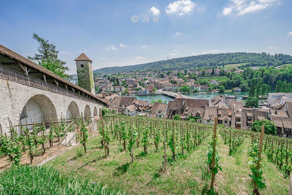 米諾要塞,沙夫豪森米諾要塞,Munot堡壘,梅諾城堡,梅諾要塞,瑞士旅遊景點-39