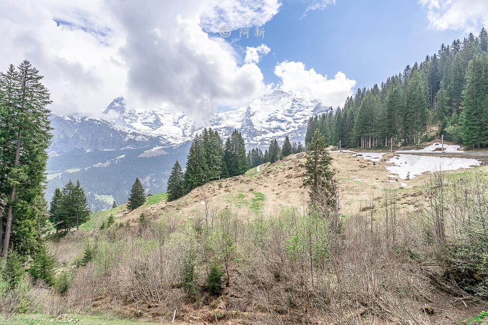 雪朗峰,schilthorn,雪朗峰天空步道,schilthorn纜車,雪朗峰天氣,schilthorn price,雪朗峰票價,雪朗峰纜車時刻表,schilthorn weather,雪朗峰schilthorn交通,瑞士雪朗峰天氣,瑞士自由行,瑞士旅遊-62