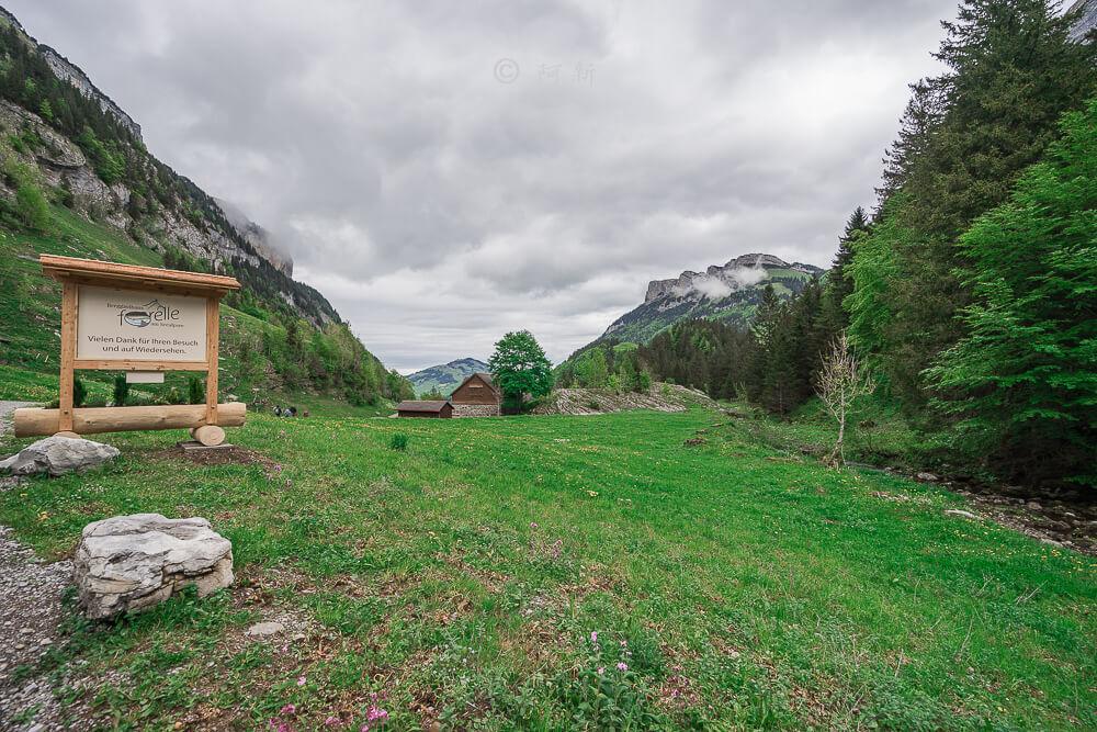 瑞士阿彭策爾塞阿爾卑湖,Seealpsee,塞阿爾卑湖,瑞士Seealpsee,瑞士塞阿爾卑湖,瑞士希阿爾卑湖,希阿爾卑湖-35