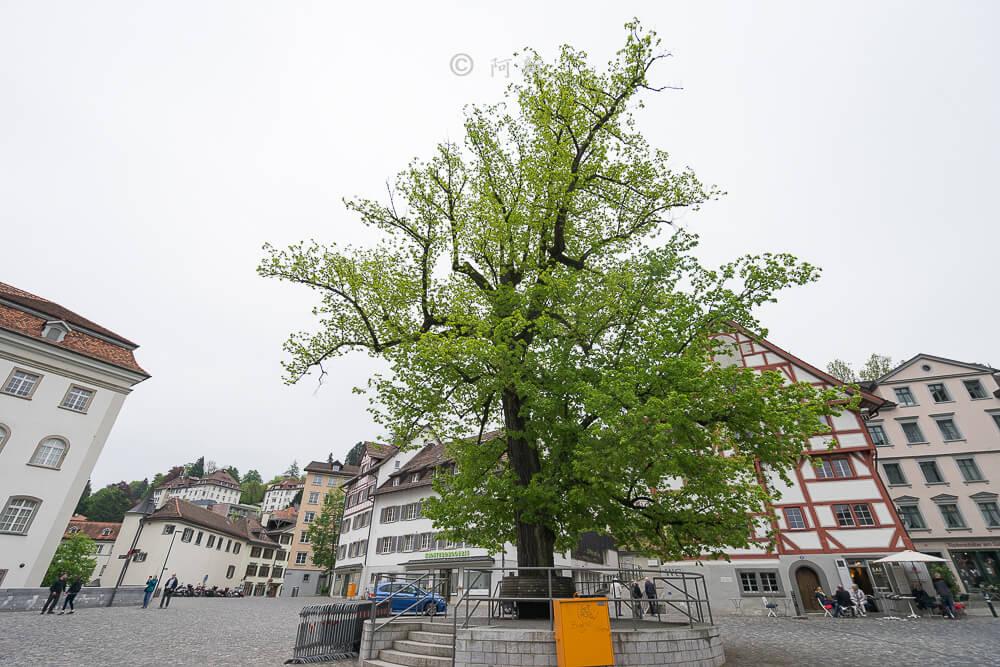 瑞士聖加侖,聖加侖,聖加侖景點,聖加侖舊城區,瑞士聖加侖景點,聖加侖紅色廣場,瑞士旅遊-22