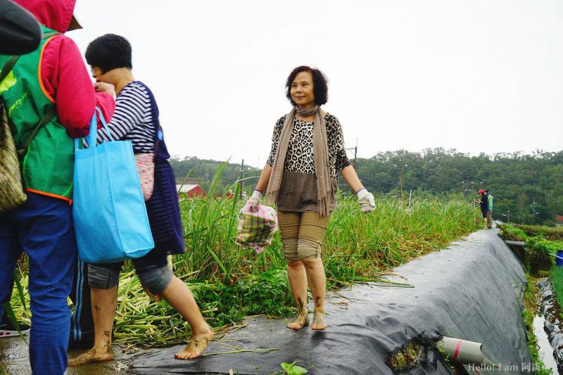 台灣好行-皇冠北海岸線-08
