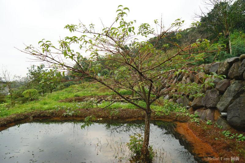 台灣好行-皇冠北海岸線-16