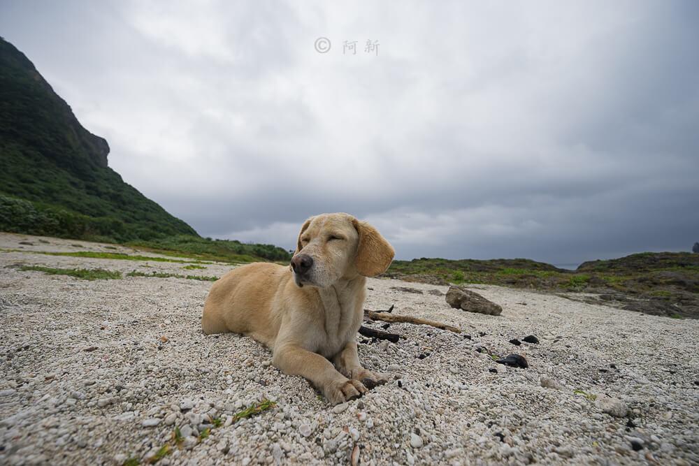 蘭嶼貝殼沙灘-17