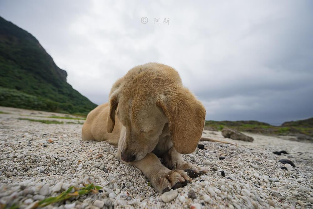 蘭嶼貝殼沙灘-18