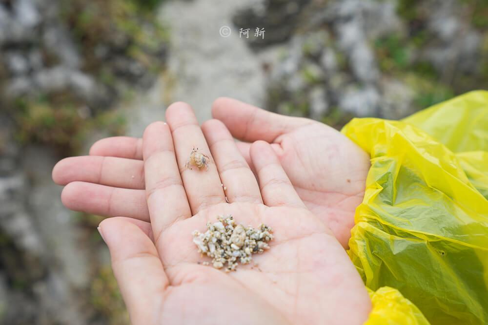 蘭嶼貝殼沙灘-21