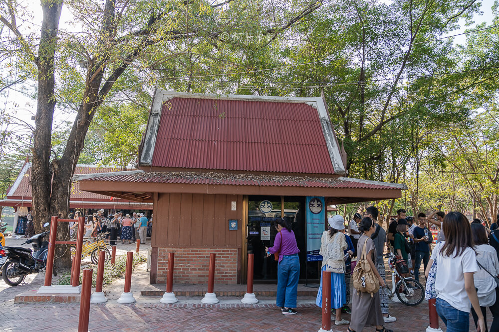 瑪哈泰寺,Wat Mahathat,樹中佛陀,泰國樹中佛陀,大城樹中佛陀,大城府遺址,泰國大城景點,泰國旅遊