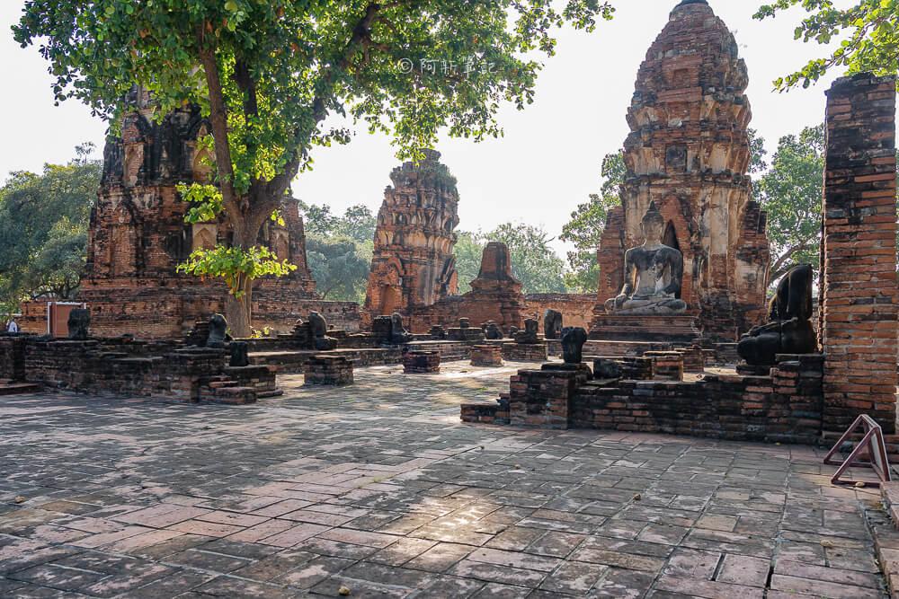 瑪哈泰寺,Wat Mahathat,樹中佛陀,泰國樹中佛陀