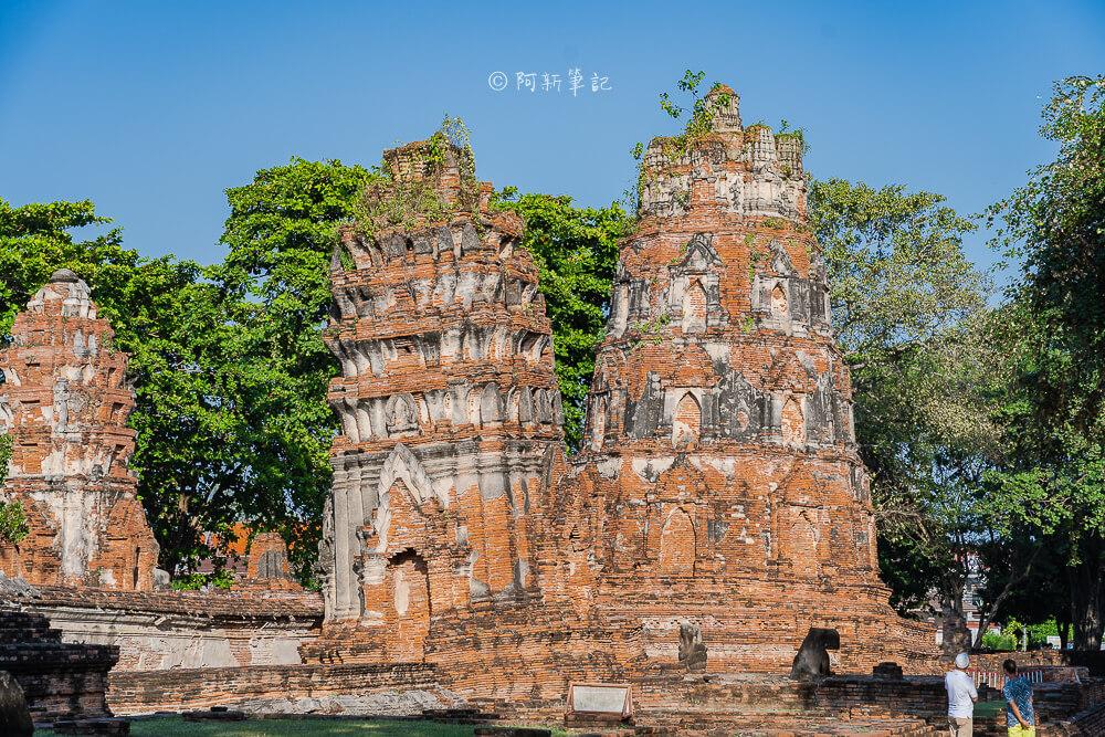 泰國樹中佛陀,大城樹中佛陀,大城府遺址,泰國大城景點